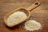 rustic scoop of white quinoa grain against grunge wood table
