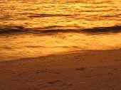 Wispy Golden Wave