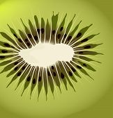 Kiwi vector background