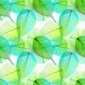 Macro green leaves seamless background texture, pattern
