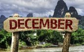 December sign with a forest background