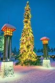 Christmas Tree In Santa Claus Village At Arctic Circle Near Rovaniemi