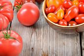 Постер, плакат: Colorful Tomatoes