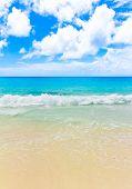 Waves Tide Surf