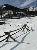 picture of split rail fence  - Split rail fence in snowy meadow in Colorado - JPG