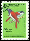 Vintage  Postage Stamp. Bird Cianolanius Madagascariensis.