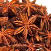 Star anise or Illicium verum