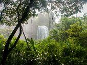 Iguazu Falls Waterfall Through Plants