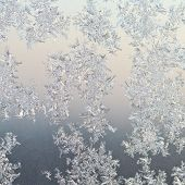 Frost Patterns On Window Glass At Winter Sunrise