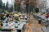 stock photo of snitch  - Old cemetery in the small Polish town - JPG