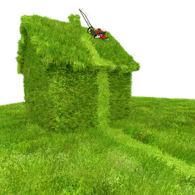 image of grass-cutter  - A whimsical illustration about lawn care and property neglect - JPG