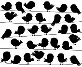 picture of cardinal-bird  - Cute Cartoon Style Bird Silhouettes in Vector Format - JPG