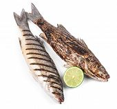 picture of bass fish  - Two grilled fish on white - JPG