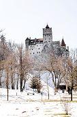 picture of dracula  - Bran Castle is known as Dracula - JPG