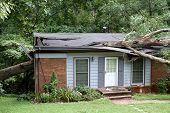 stock photo of tree house  - A heavy white oak tree falls ripping a small house in two - JPG