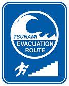 Tsunami Pedestrian