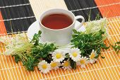 Cup Of Tea With Herbs And Daisies