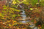 Autumn Mountain Cascade