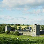 Постер, плакат: Келлс монастырь Килкенни Ирландия