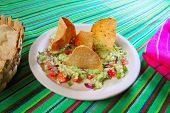 guacamole mexican salad with nachos totopos food of Mexico
