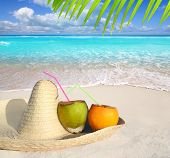 Coconuts in Caribbean beach on mexico sombrero hat tropical turquoise
