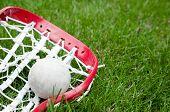 Cabeça de Lacrosse de meninas e cinza bola na grama