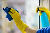 Female Hand In Yellow Gloves Cleaning Window Pane With Rag And Spray Detergent. Cleaning Concept poster