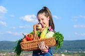 Child Cheerful Celebrate Harvest Holiday Vegetables Basket. Harvest Festival Concept. Childhood In C poster