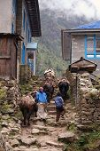 stock photo of sherpa  - yaks and sherpas along the trail through monjo - JPG