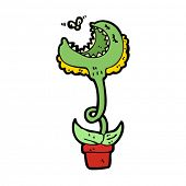 pic of flytrap  - venus flytrap cartoon - JPG