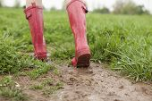 pic of stomp  - A pair of pink rain boots walk through a muddy patch of grass.