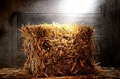 Bale Of Straw Hay In Old Dusty Farm Or Ranch Barn