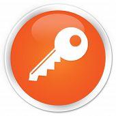 Key Icon Orange Button