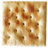 Saltine Cracker