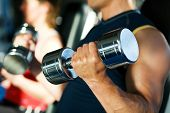 Dumbbell-Training im Fitnessstudio