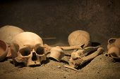 stock photo of skull bones  - Frightening human bones on ancient archaeological site - JPG
