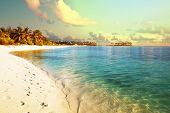 stock photo of swimming  - Maldives beach - JPG