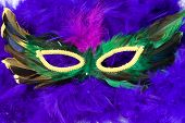 picture of mardi gras mask  - Closeup view of a masquerade mask shot on a blue feathered boa - JPG
