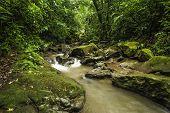 Córrego de fluxo rápido