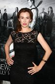 LOS ANGELES - JUL 10:  Wynn Everett arrives at the HBO series