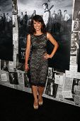 LOS ANGELES - JUL 10:  Constance Zimmer arrives at the HBO series