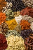 picture of indian food  - tray of indian curry spices - JPG