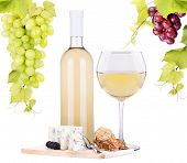white wine assortment cheese and grapes