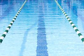 picture of swim meet  - Swimming Pool Swim Lanes - JPG