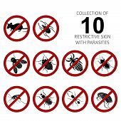 picture of parasite  - Vector Collection of image of 10 parasites - JPG