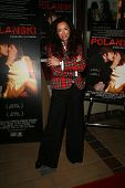 Sofia Milos  at the Charity Screening of 'Polanski Unauthorized' to Benefit the Children's Defense League. Laemmle Sunset 5 Cinemas, West Hollywood, CA. 02-10-09