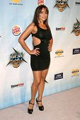 Vida Guerra   at Spike TV's 2008 'Video Game Awards'. Sony Pictures Studios, Culver City, CA. 12-14-08