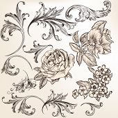 Collection Of Vector Decorative Flourishes For Design
