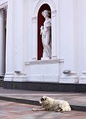 Hermes Statue, Odessa