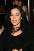 Carmen Perez at the Charity Screening of 'Polanski Unauthorized' to Benefit the Children's Defense League. Laemmle Sunset 5 Cinemas, West Hollywood, CA. 02-10-09